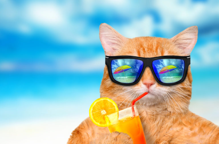 La CGT AG2R REUNICA vous souhaite un bel été !